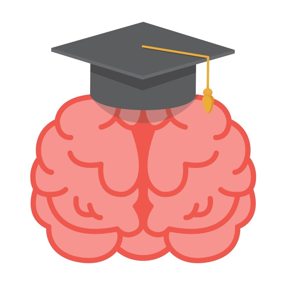 brain-2799833_1920.jpg