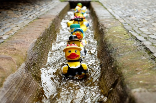 rubber-duck-1401225_1920