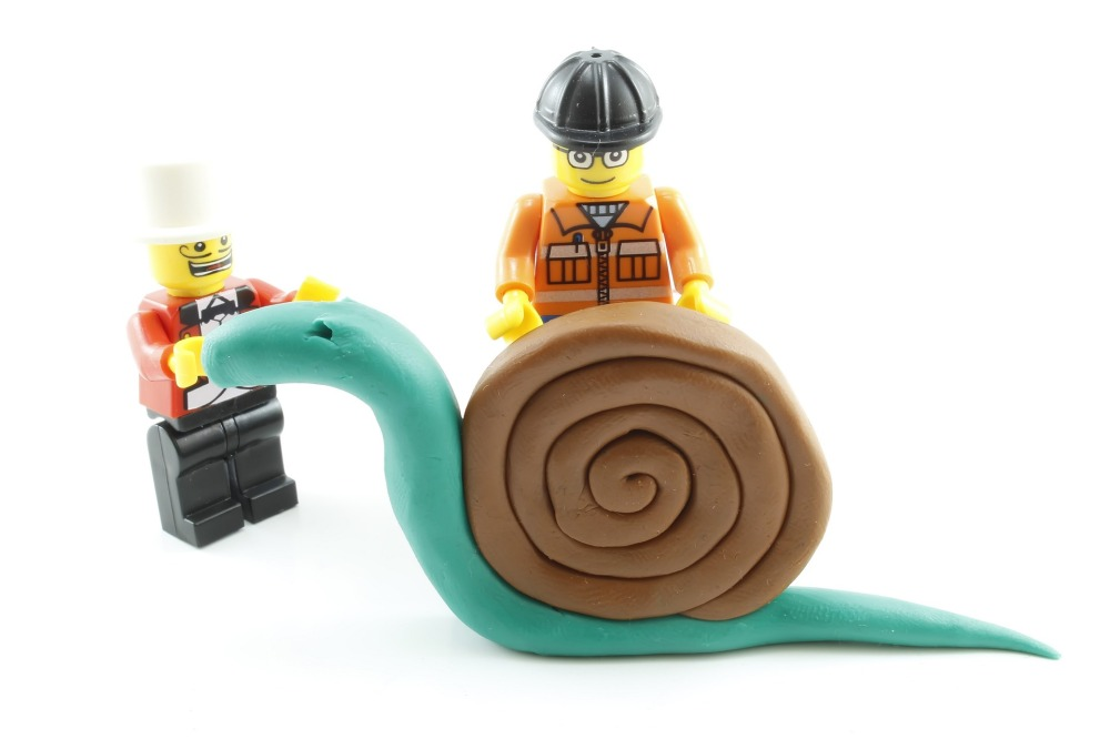 snail-2158111_1920.jpg