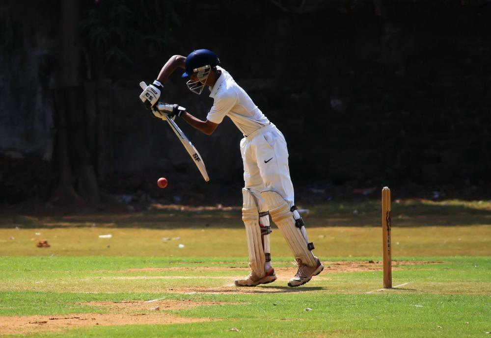 cricket-166904_1920.jpg